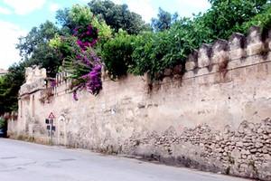 Giardino di Villa Telesio