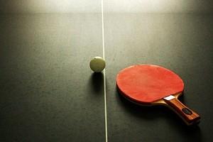 Ping pong tennis tavolo