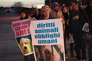 Protesta contro gli animali nel circo