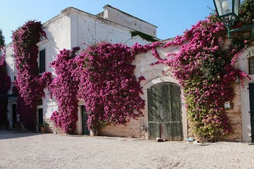 Villa Schinosa a Trani