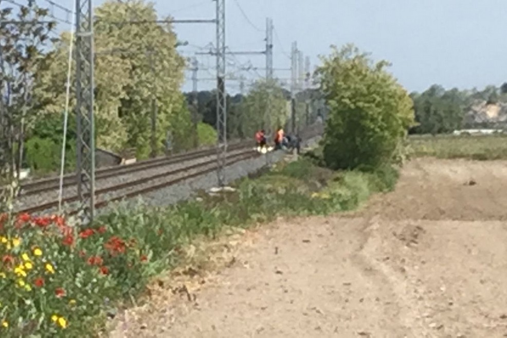 Incidente mortale sulla linea ferroviaria Trani-Bisceglie, traffico bloccato