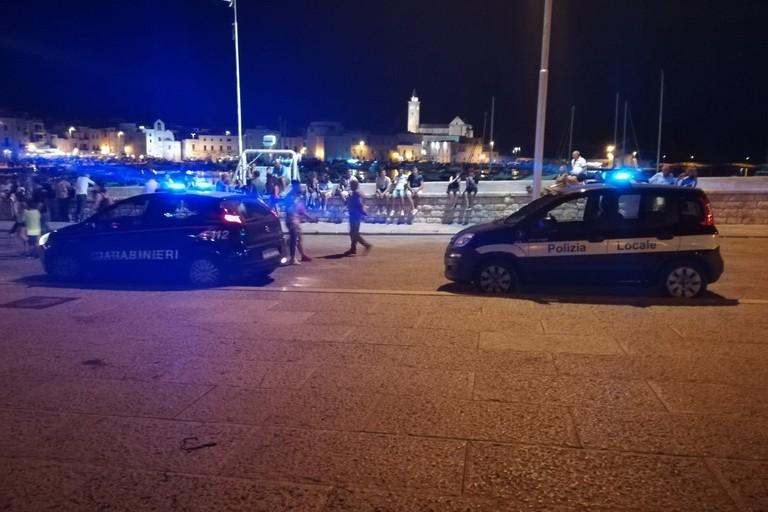 Carabinieri e Polizia Locale sul porto