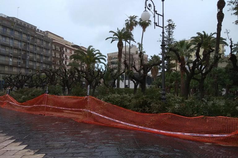 Potatura in Piazza della Repubblica