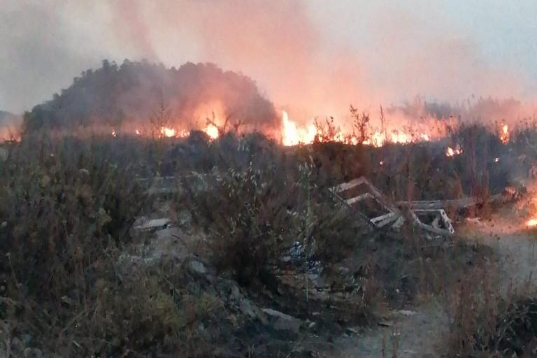 Incendi costa nord